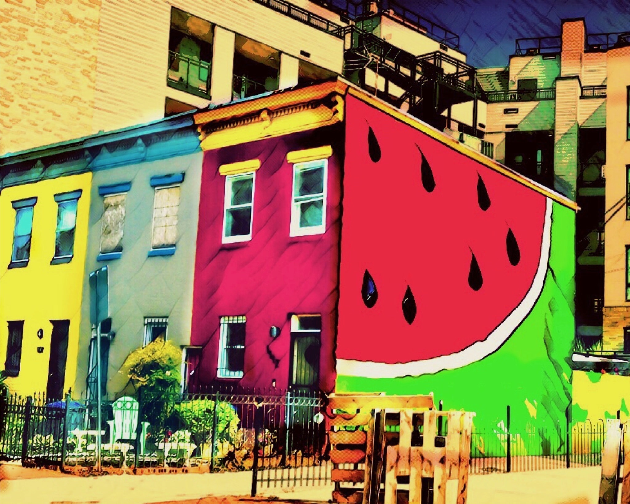 Image result for the watermelon house dc